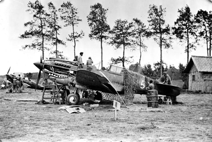 P40E  1/48 haségawa  -   Image520