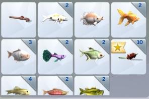 [Clos] Les défis Sims - Niveau 2 Comman12