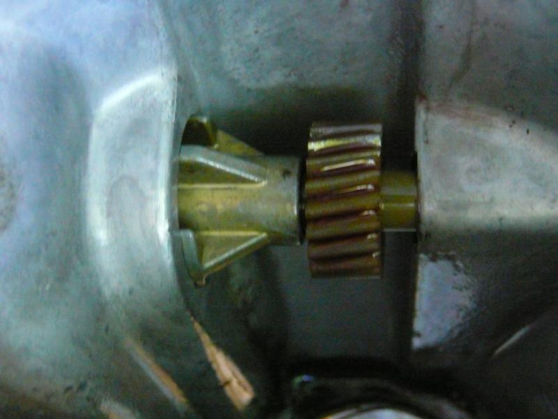 speedometer  P1030811