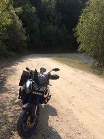 Vos plus belles photos de moto - Page 14 21557610