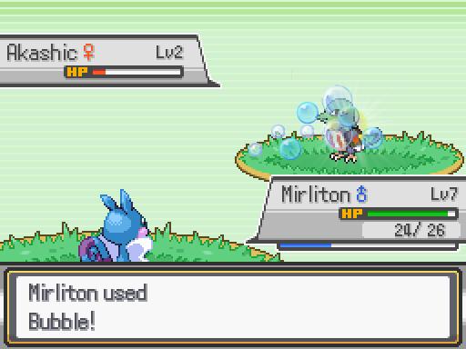 Pokémon RMN Version Prmn0510