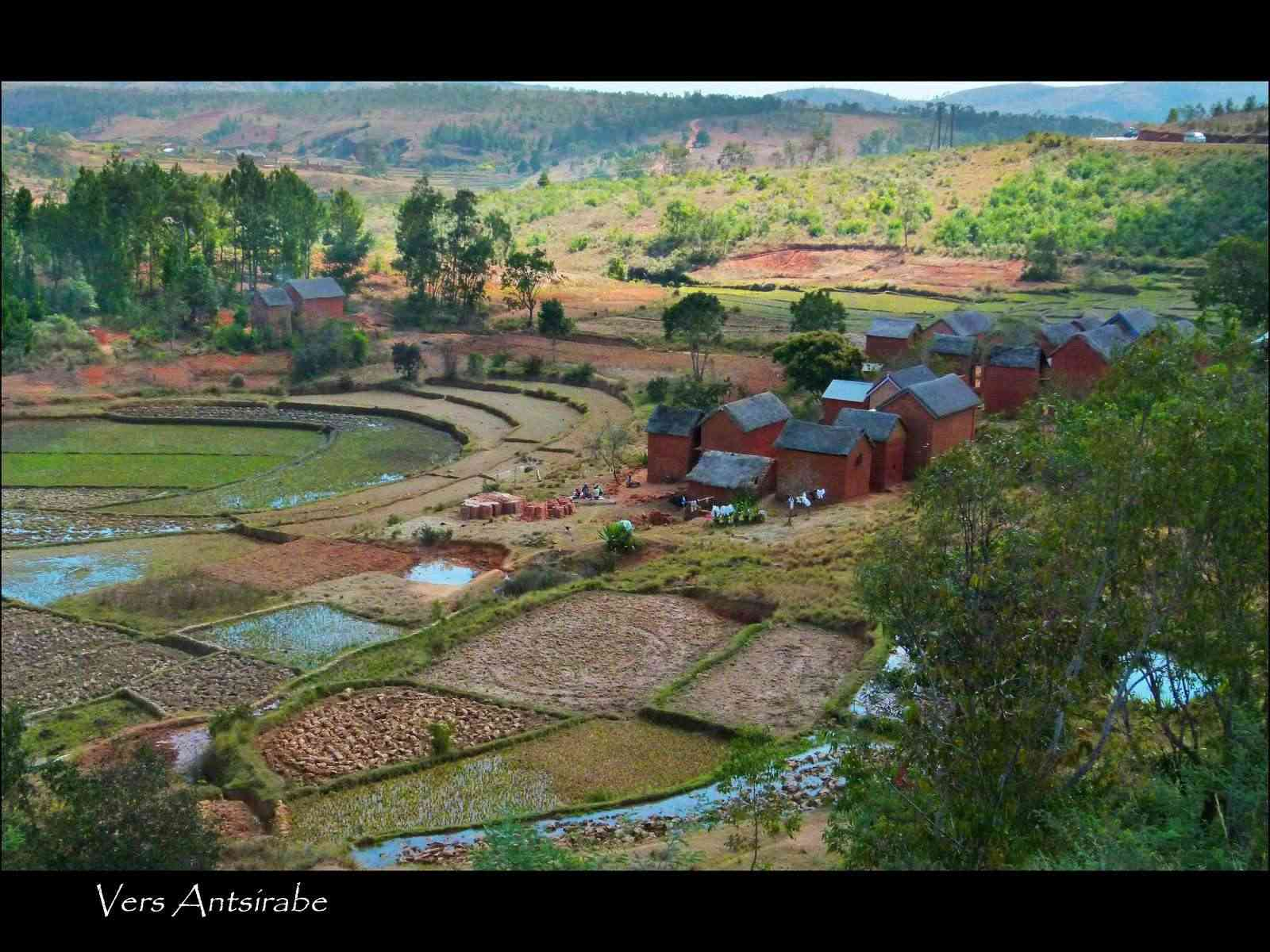 MADAGASCAR 2012 P1170611