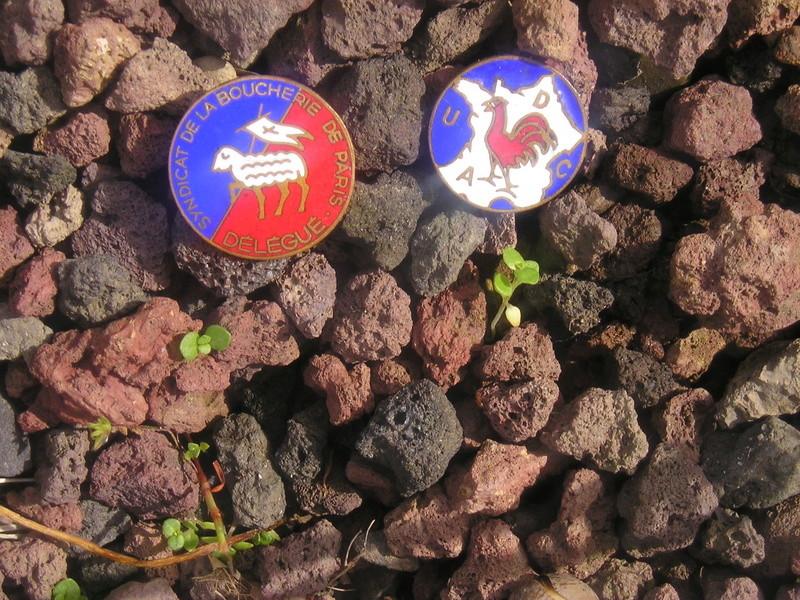 insigne de l'udca et un insigne de delegué des bouchers de paris P1010083