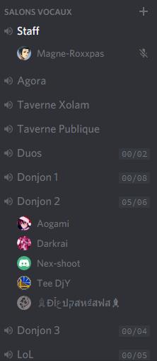 [Tuto] Discord et son serveur Xolam Disc310