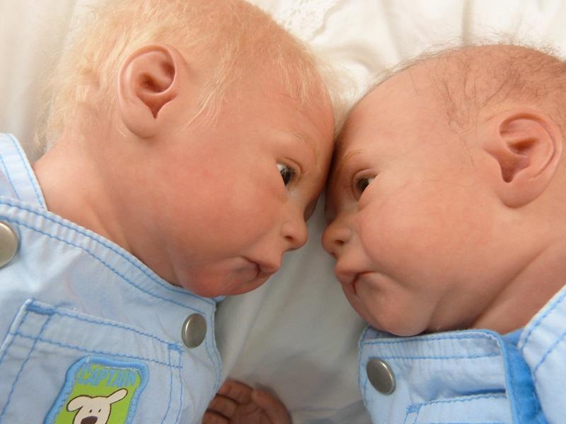 Jase und Jonas als Zwillinge P1050810
