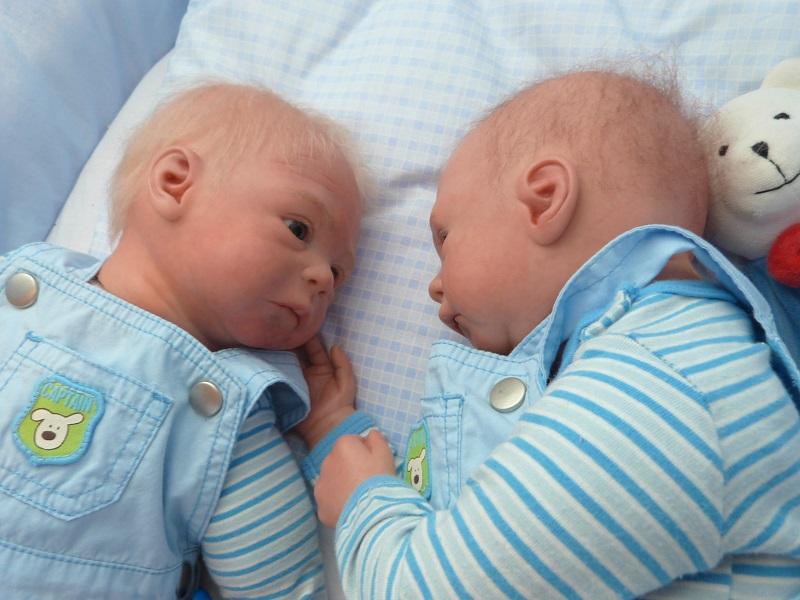 Jase und Jonas als Zwillinge P1050811