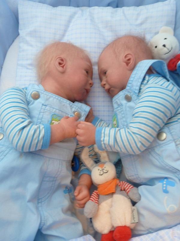 Jase und Jonas als Zwillinge P1050813
