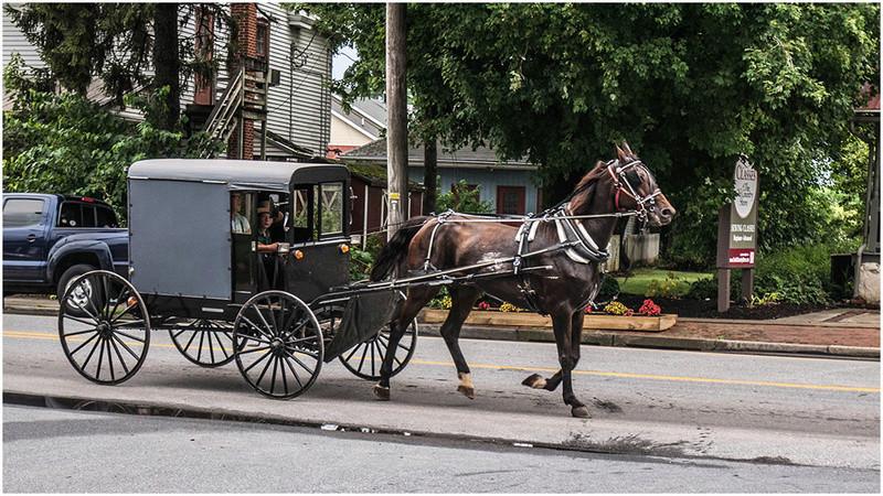 Nouvelle Angleterre par les Byways (chemins de traverse) Amish-10