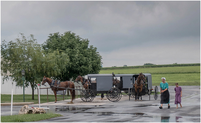 Nouvelle Angleterre par les Byways (chemins de traverse) Amish-11