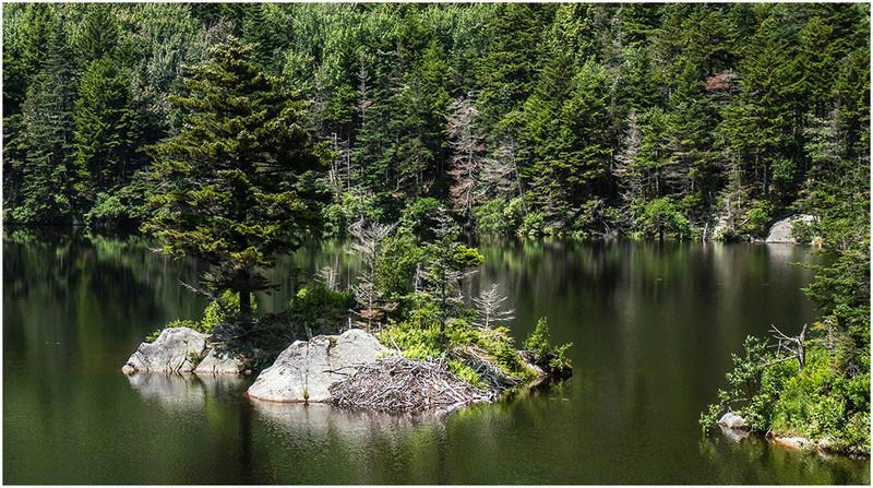 Nouvelle Angleterre par les Byways (chemins de traverse) Beaver10