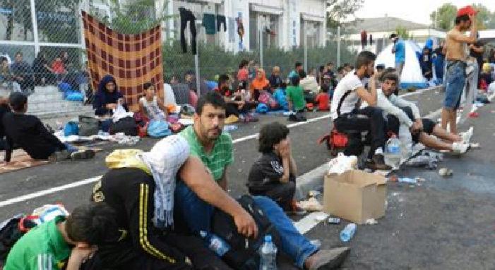 Migrants : ils se convertissent au christianisme après leur arrivée en Europe Migran10