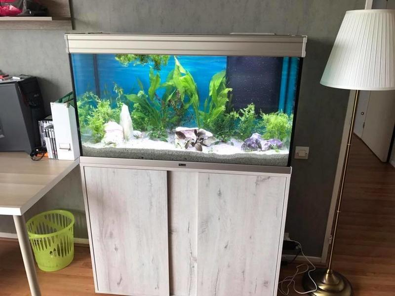 Préparation aquarium 200L enfin terminée ! Aquari10