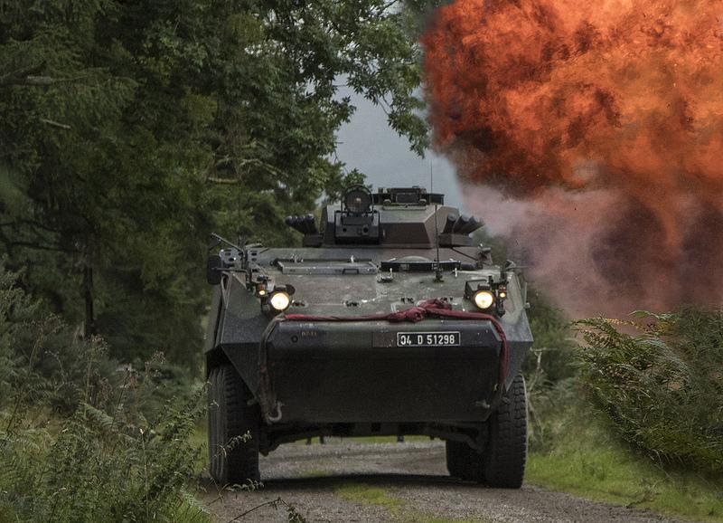 Armée Irlandaise/Irish Armed Forces - Page 3 2069