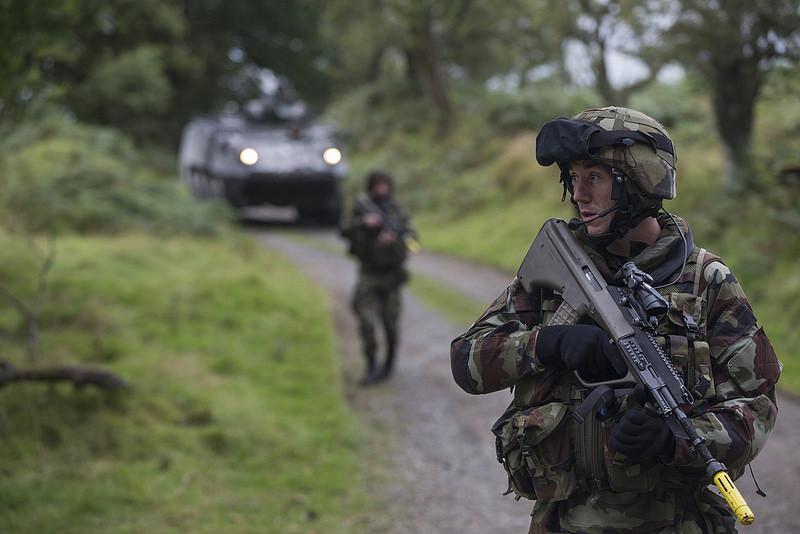 Armée Irlandaise/Irish Armed Forces - Page 3 2169