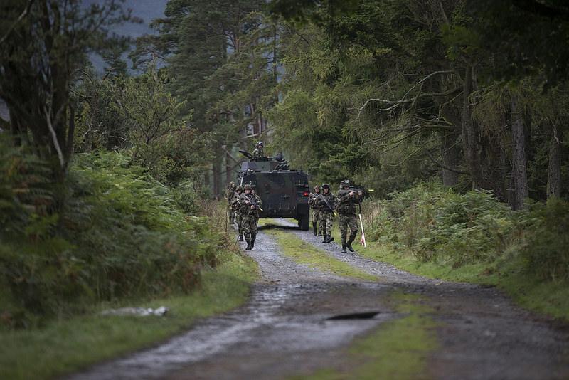 Armée Irlandaise/Irish Armed Forces - Page 3 22109