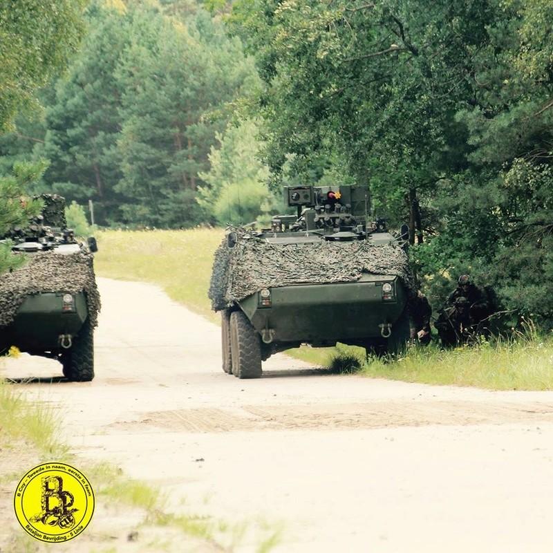 Armée Belge / Defensie van België / Belgian Army  - Page 12 2347