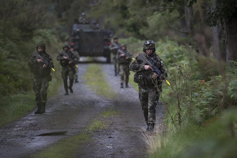 Armée Irlandaise/Irish Armed Forces - Page 3 2390