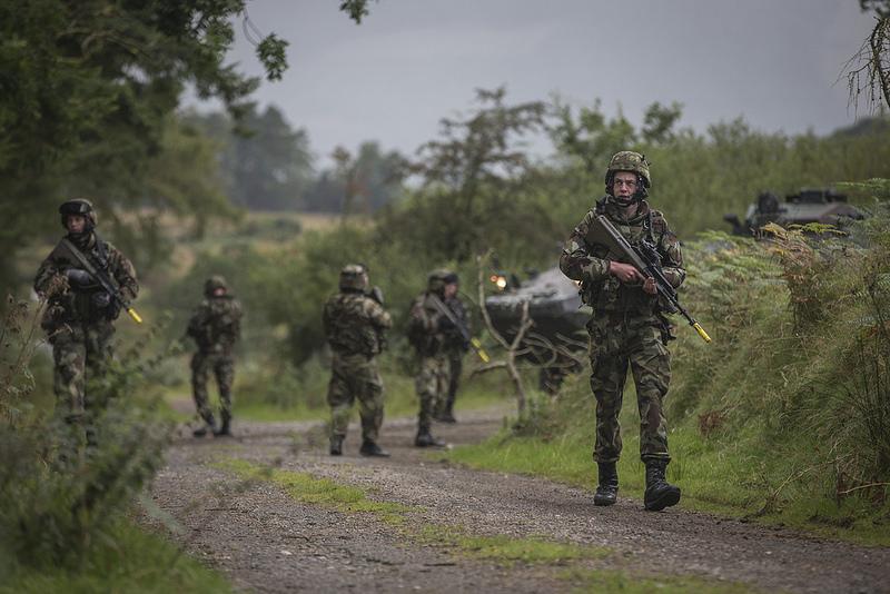 Armée Irlandaise/Irish Armed Forces - Page 3 2562