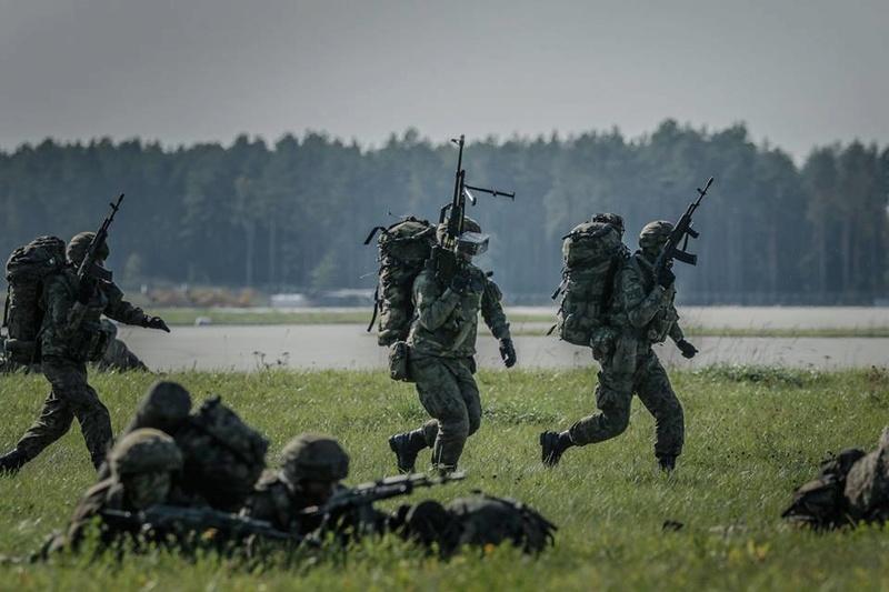 Les Forces Armées Polonaises/Polish Armed Forces - Page 23 2569