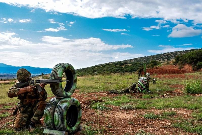 Forces armées grecques/Hellenic Armed Forces - Page 28 2753
