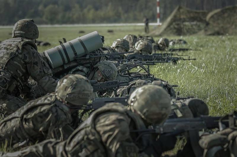 Les Forces Armées Polonaises/Polish Armed Forces - Page 23 2759