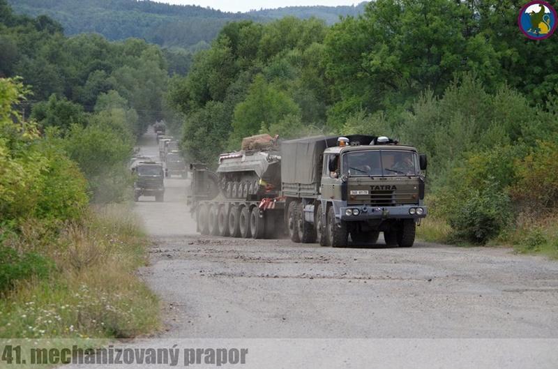 Armée tchèque/Czech Armed Forces - Page 10 2923