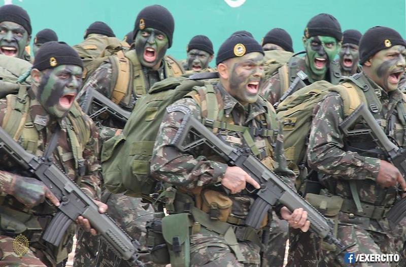 Armée Brésilienne/Brazilian Armed Forces/Forças Armadas Brasileiras - Page 32 3012
