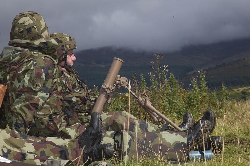 Armée Irlandaise/Irish Armed Forces - Page 3 3016