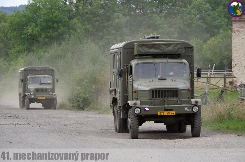 Armée tchèque/Czech Armed Forces - Page 10 3020