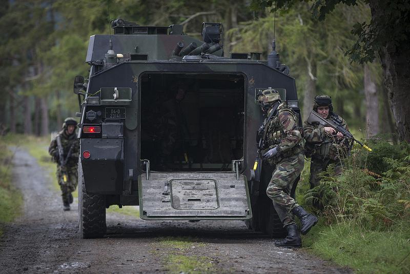 Armée Irlandaise/Irish Armed Forces - Page 3 3130