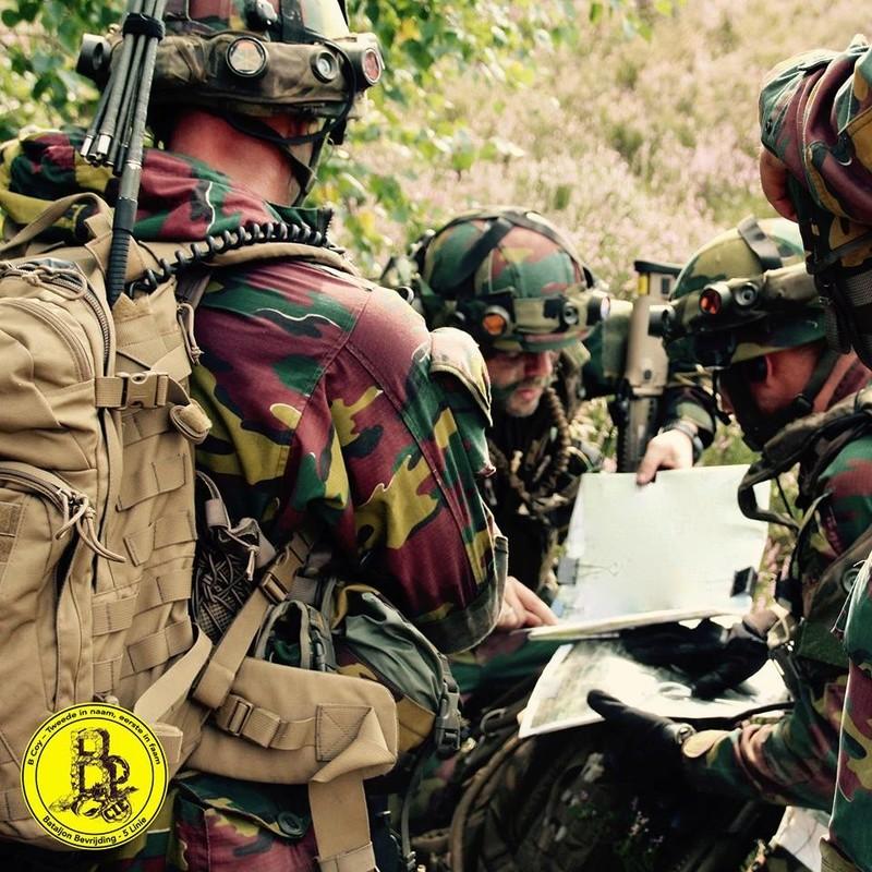 Armée Belge / Defensie van België / Belgian Army  - Page 12 3223
