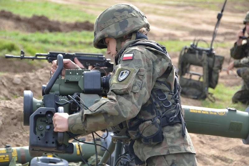 Les Forces Armées Polonaises/Polish Armed Forces - Page 23 723
