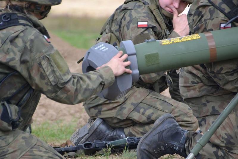 Les Forces Armées Polonaises/Polish Armed Forces - Page 23 725