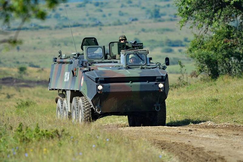 Armée Roumaine/Romanian Armed Forces/Forţele Armate Române - Page 10 99a33