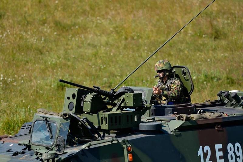 Armée Roumaine/Romanian Armed Forces/Forţele Armate Române - Page 10 99c29
