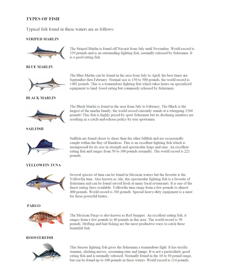 Salt Water Fishing Chart Fish_t10
