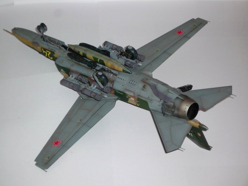 """MiG-27 """"Flogger-D""""; Trumpeter 1/48 - Page 5 P1100325"""