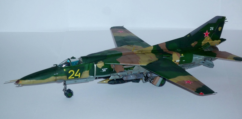 """MiG-27 """"Flogger-D""""; Trumpeter 1/48 - Page 5 P1100410"""