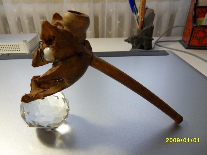 Le musée des horreurs de Pepere Sdc10018