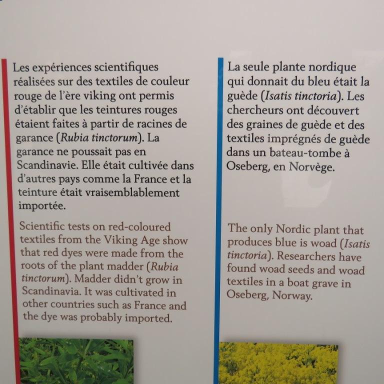 Expo Vikings à Nantes Img_1525