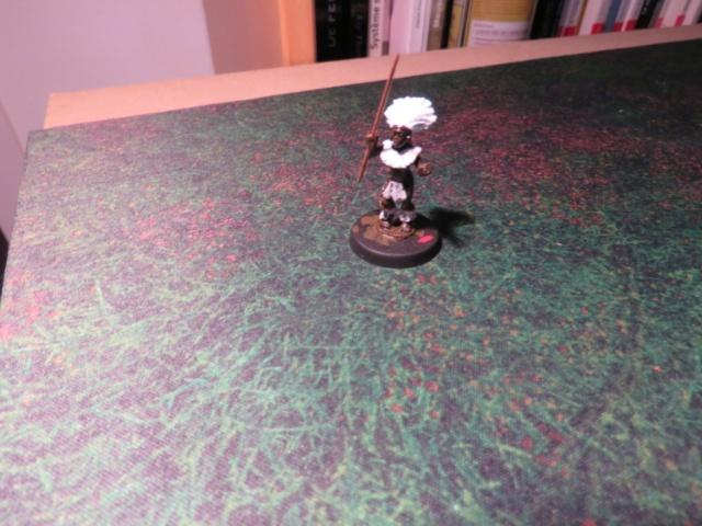 Proposition de commande groupée chez Foundry Miniatures Img_3934