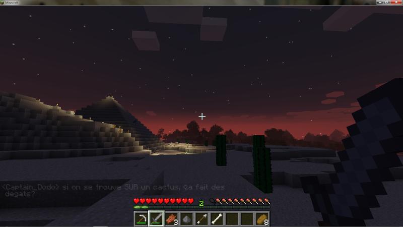 Blabla Minecraft - Page 6 Soleil10
