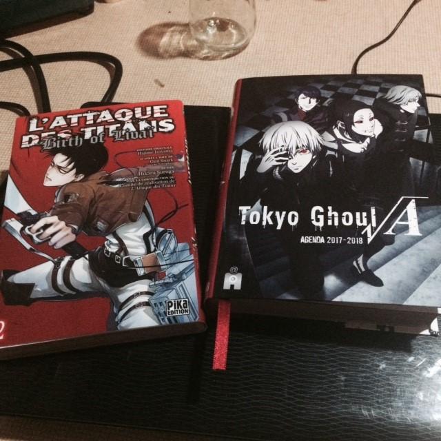 Vos achats d'otaku et vos achats ... d'otaku ! - Page 7 Achats10