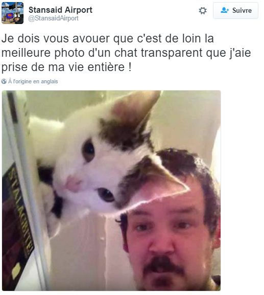 HUMOUR - blagues - Page 5 43543510