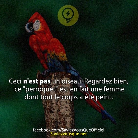 HUMOUR - blagues - Page 6 4731a311