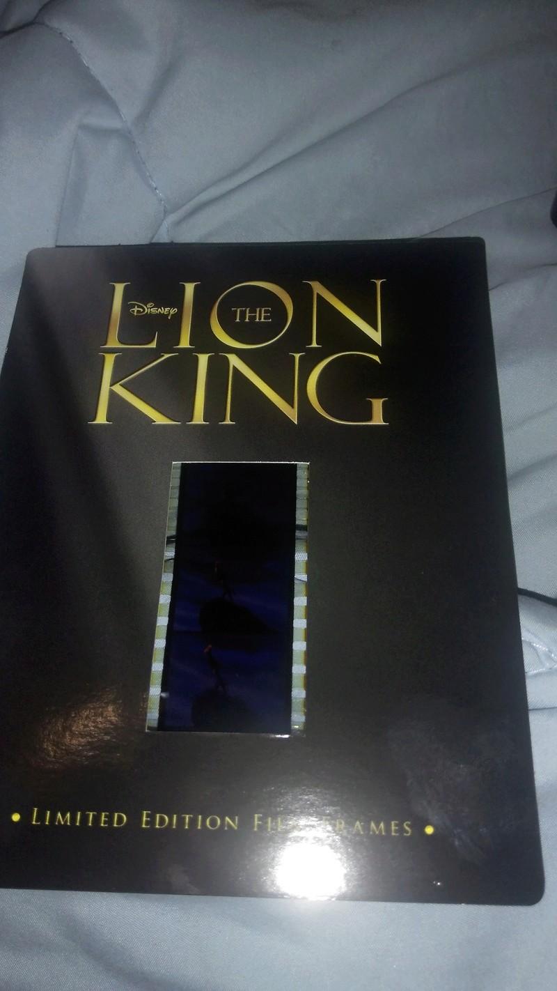 Le Roi Lion - Page 17 Img_2014
