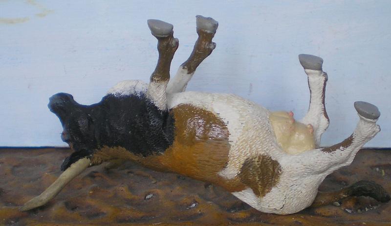 Meine Longhorn-Herde wächst - Seite 3 260c5_10