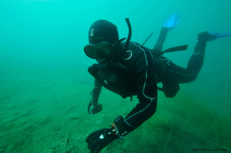 plongée aux Îles à Sion (Valais) _dsc1121