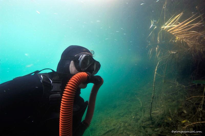 plongée aux Îles à Sion (Valais) _dsc1125