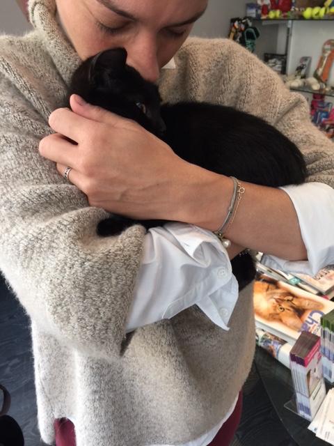 SOS pour un nouveau chat abandonné qui a trouvé une nouvelle famille Unknow22